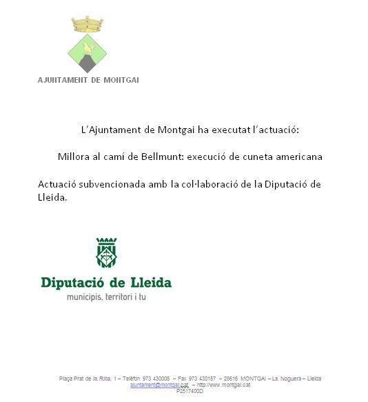 Diputació de Lleida: Cuneta americana al camí de Bellmunt 2018