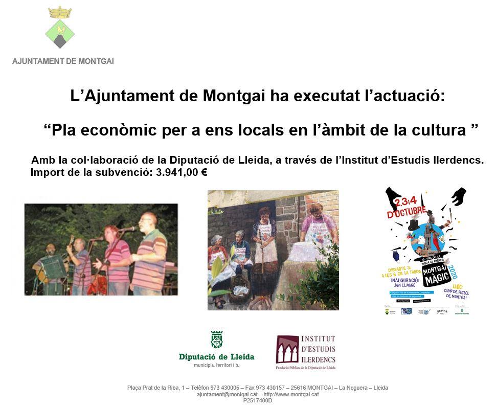 Diputació de Lleida: Pla Econòmic en l'àmbit de la cultura 2020